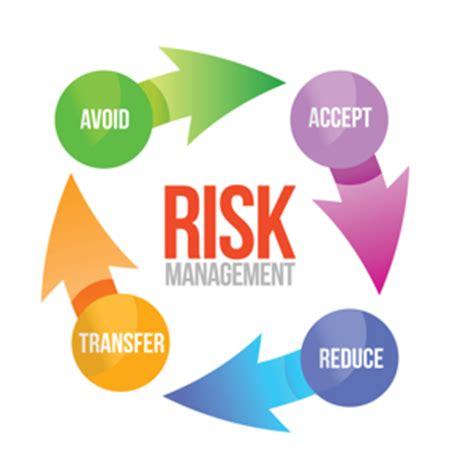 Sample essay on risk management